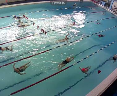 Брянск. Веб камера онлайн бассейн Динамо