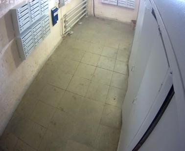 Глазов. Веб камера онлайн улица К. Маркса, дом 12 камера 1