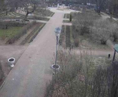Парк «Сокольники». Веб камера онлайн большой розарий