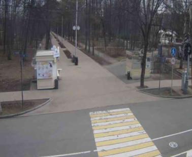Парк «Сокольники». Веб камера онлайн майский просек