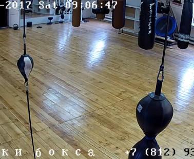 Санкт-Петербург. Веб камера онлайн школа бокса А. Морозова