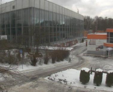Парк «Сокольники». Веб камера онлайн современный музей каллиграфии