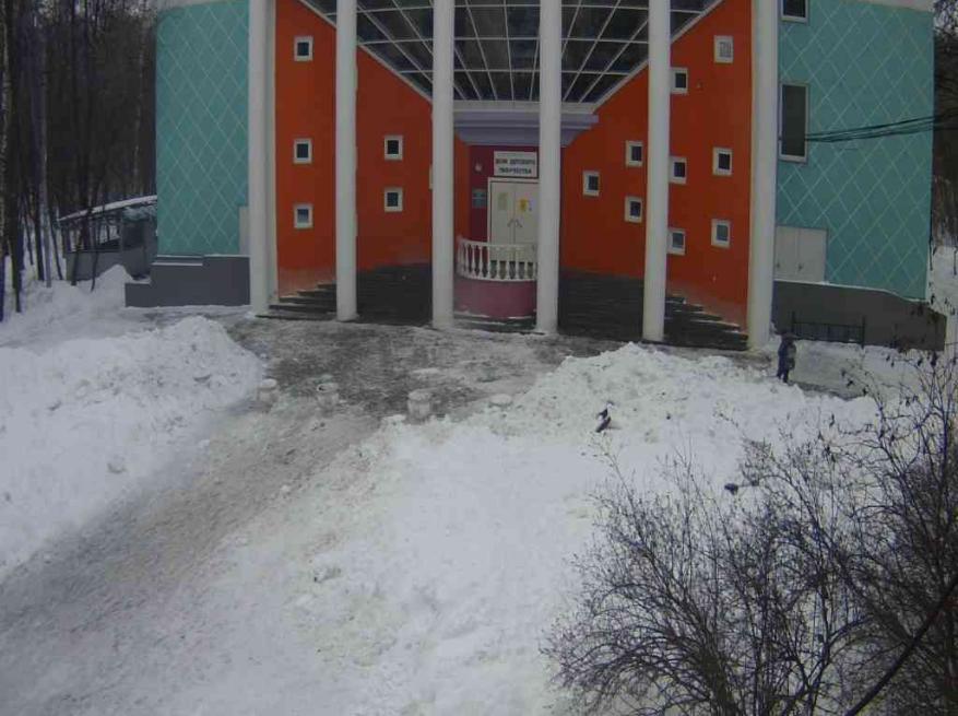 Парк «Сокольники». Веб камера онлайн дом детского творчества
