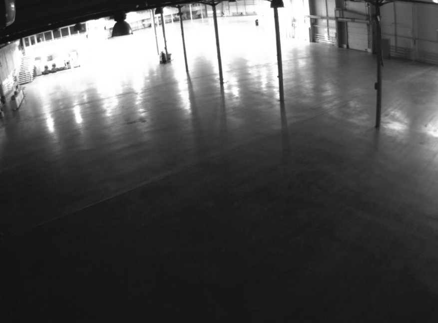 Парк «Сокольники». Веб камера онлайн павильон № 2